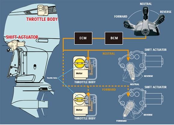 Схема прецизионного управления Suzuki (электронные системы дроссельной заслонки и переключения передач)